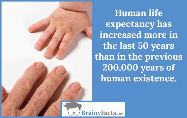 Human life expectancy