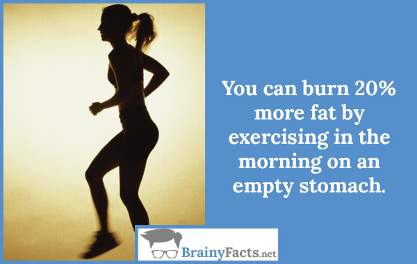 Burn more fat