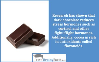 Chocolate reduces stress