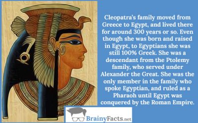 Cleopatra Wasn't Egyptian