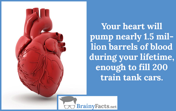 Your heart pumping