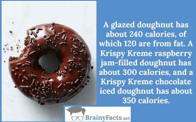 Doughnut calories