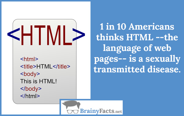 What does HTML mean?