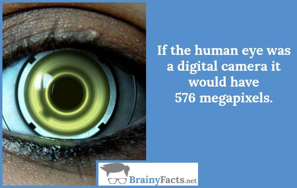 Human eye camera