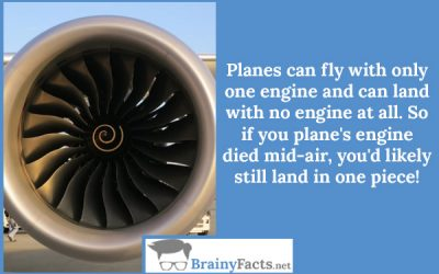 One engine