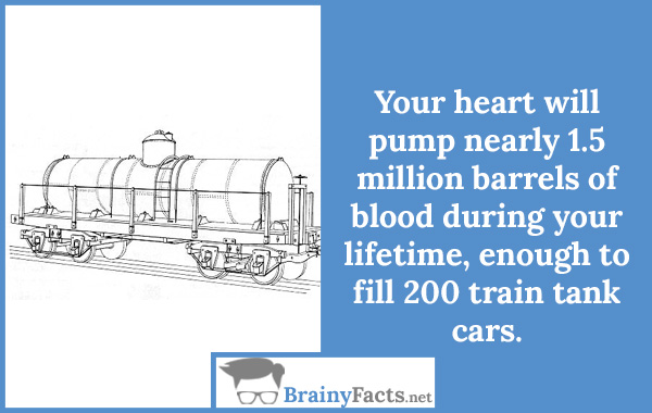 Your heart will pump