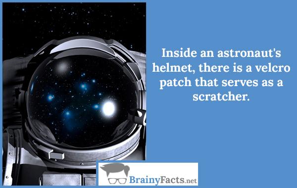 Inside scratcher
