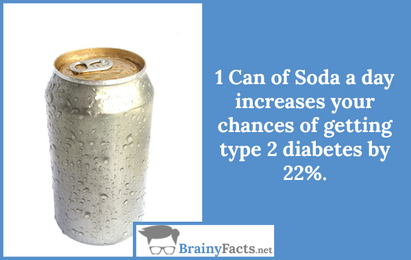1 Can of Soda a day