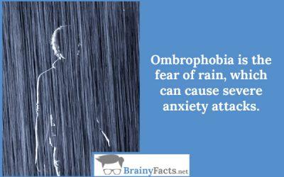 Ombrophobia