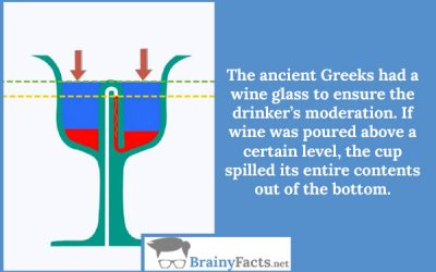 Drink wise