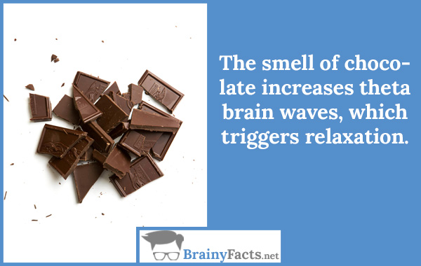 The smell of chocolate