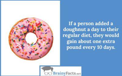 Doughnut diet
