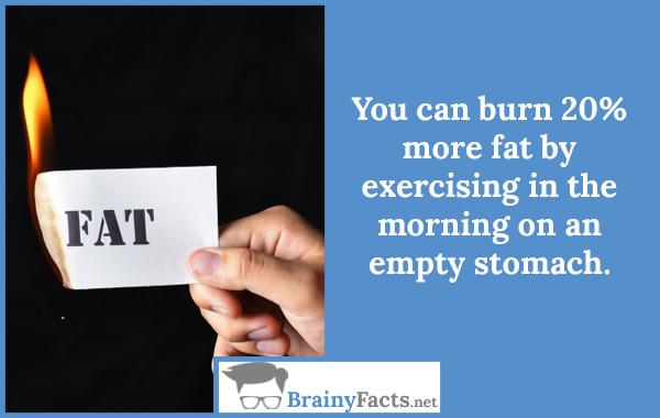 Burn more fats
