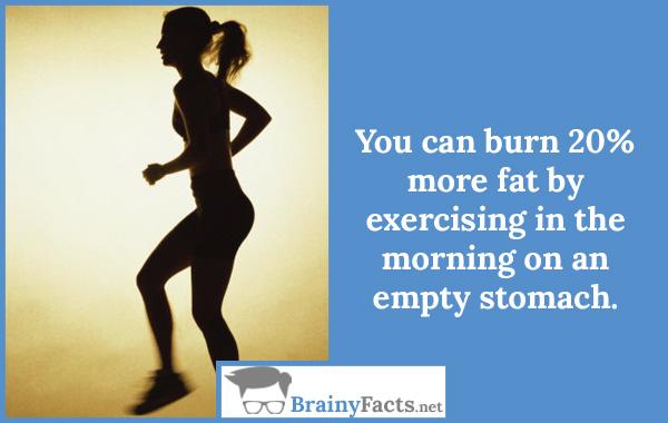 Burn more fat