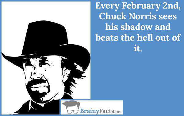 February 2nd