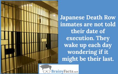 Date of execution