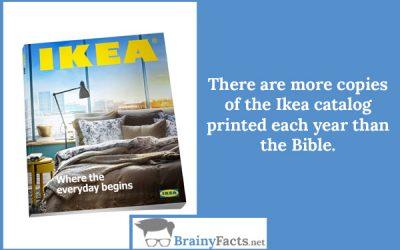 Most Popular Book