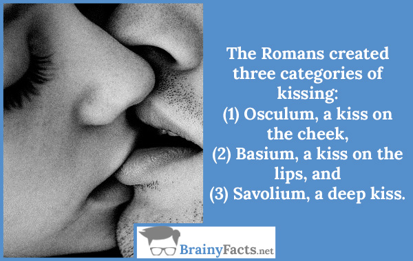 Kissing categories
