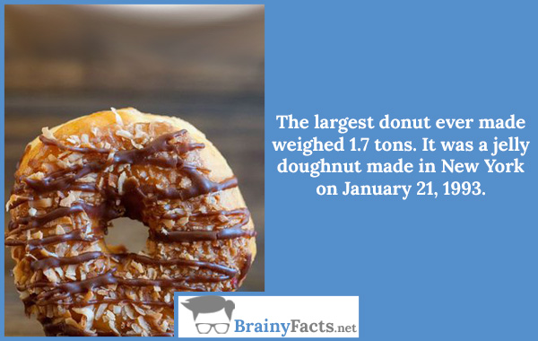 The largest donut