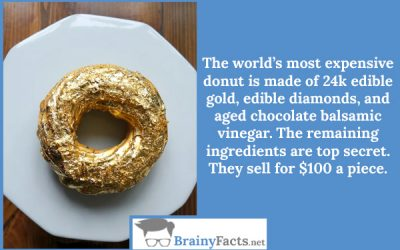 Most expensive donut