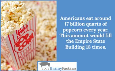 Americans eat…