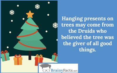 Presents on trees