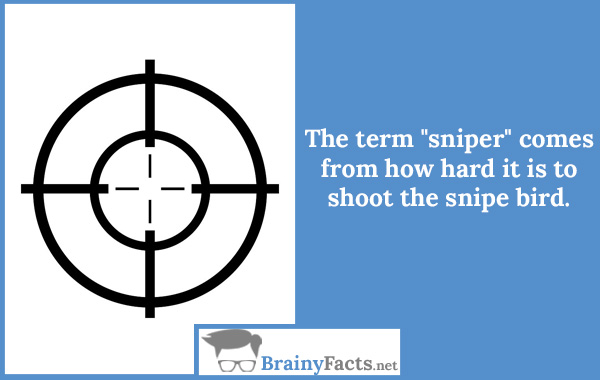 "The term ""sniper"""