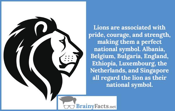 A National Symbol