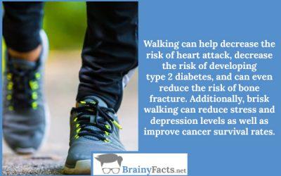 Decrease the risk